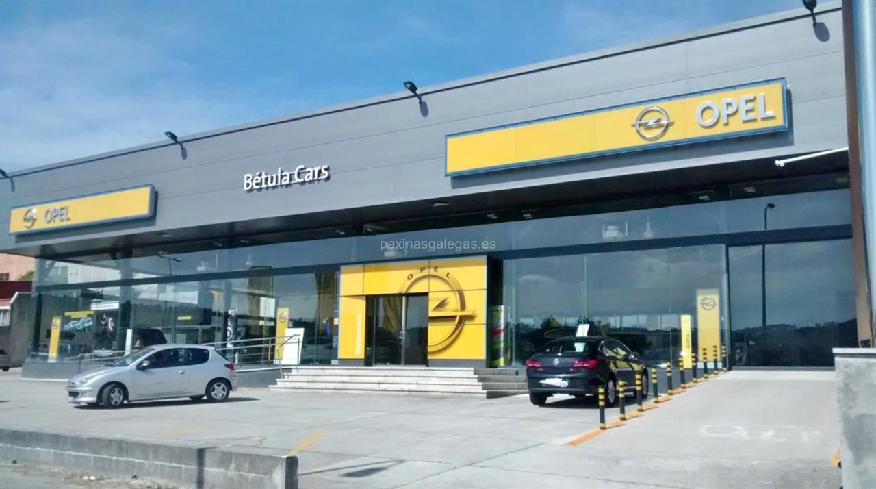 betula-cars-opel_img247945t0
